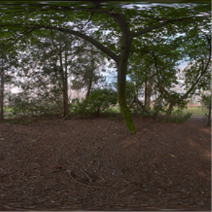 HDRI 360 069-park-dense-trees | Other Files | Everything Else