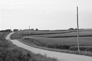 iowa fields 1