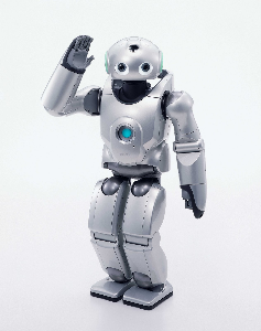 mediafire forex robot