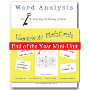 Word Analysis Mini-Unit | Other Files | Everything Else