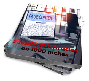200,000 plr articles on 1000 niches