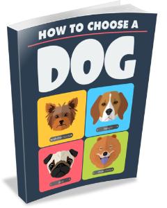 How to Choose A Dog | eBooks | Pets