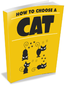 How to Choose A Cat | eBooks | Pets