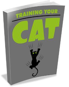 Training Your Cat | eBooks | Pets