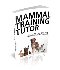 Mammal Training Tutor | eBooks | Pets