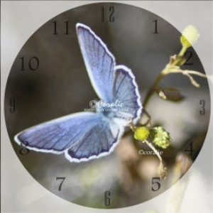 butterfly clock template