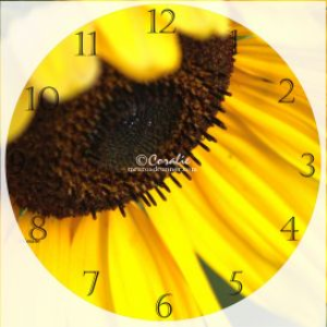 sunflower clock template