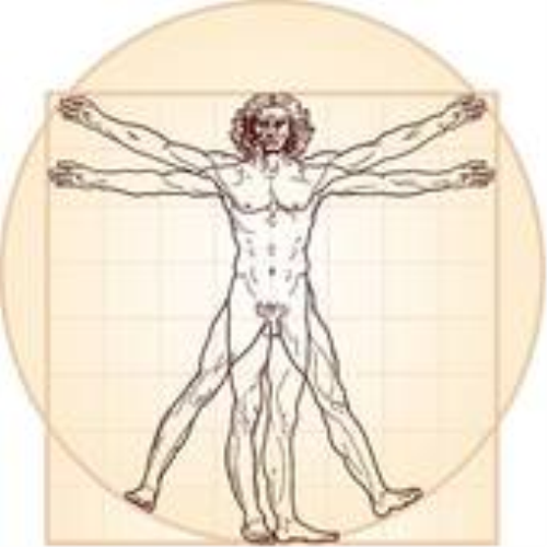First Additional product image for - Anatomical Meditation
