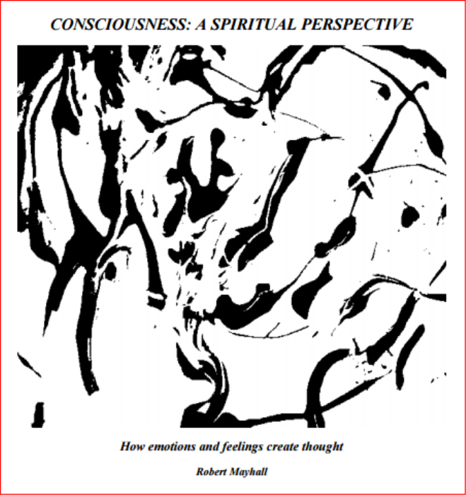 First Additional product image for - Consciousness: A Spiritual Perspective
