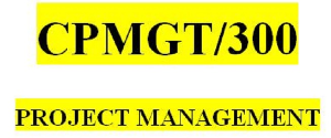 CPMGT 300 Week 1 Perceptions of Project Management | eBooks | Education