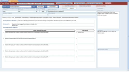 First Additional product image for - NCaP-Nursing Care Plan Maker