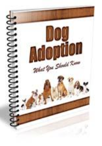dog adoption newsletter