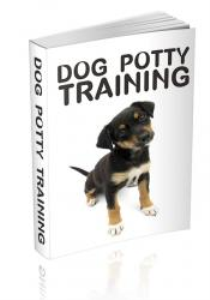 dog potty training - teaching your pup the right ways - learn tips the pros use