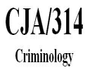 CJA 314 Week 5 Learning Team Paper/Presentation – Criminology in the Future | Crafting | Cross-Stitch | Other