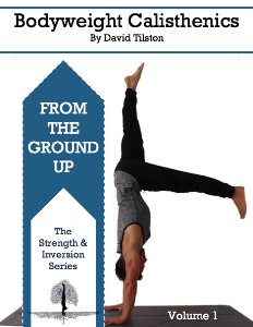 from the ground up ebook