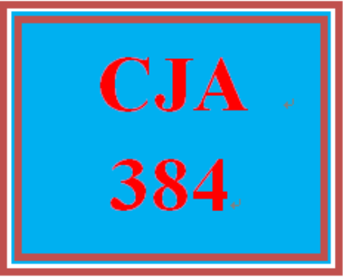 First Additional product image for - CJA 384 Team Charter