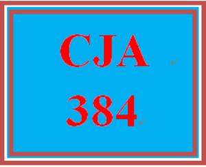 CJA 384 Week 3 Summaries   eBooks   Education