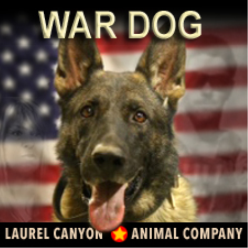 First Additional product image for - War Dog