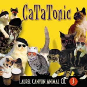 Cat-A-Tonic | Music | Rap and Hip-Hop