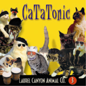 Catatonic (Album) | Music | Other