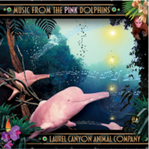 i am the pink dolphin