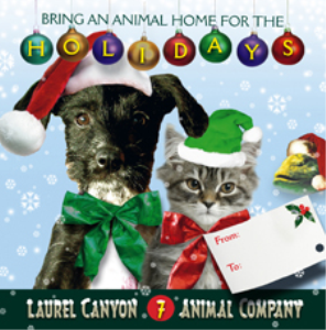 Bring An Animal Home For The Holidays | Music | Other