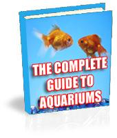 The Complete Guide To Aquariams | eBooks | Home and Garden
