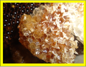 crystaline honey