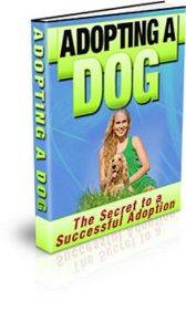 Adopting A Dog: The Secrets To A Successful Adoption | eBooks | Pets