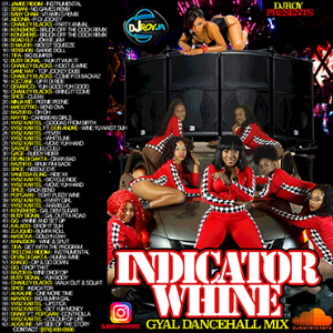 Dj Roy Indicator Whine Dancehall Mixtape | Music | Reggae