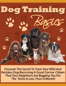 Dog Training Basics | eBooks | Pets