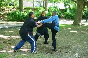 kung fu fighting training manuscript