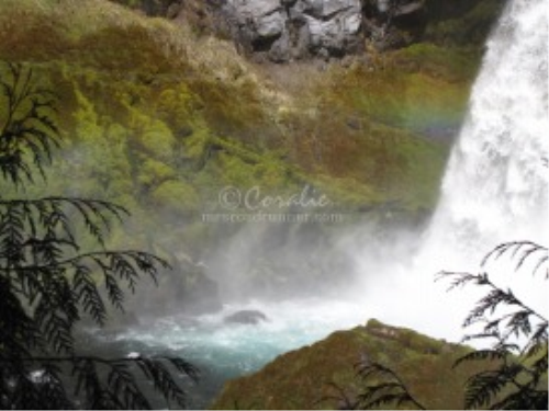 First Additional product image for - Sahalie Falls Oregon Series