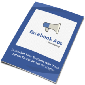 facebook ads in 16 video lessons