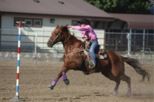 Time To Go Horse and Rider | Photos and Images | Sports