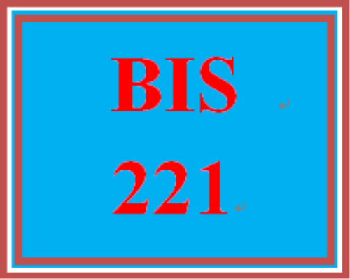 First Additional product image for - BIS 221 Week 4 Learning Team Collaborative Discussion: My Personal and Professional Story