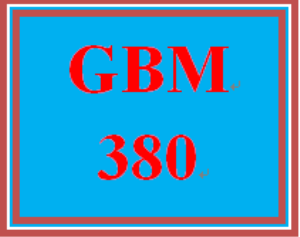 GBM 380 Week 4 WK 4 Team Project – Feasibility Study | eBooks | Education