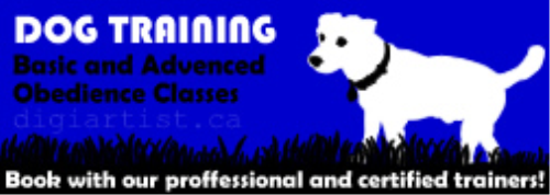 First Additional product image for - DogTraining_1