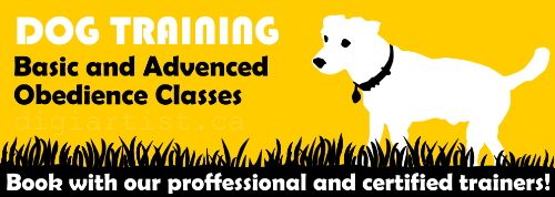 Third Additional product image for - DogTraining_1