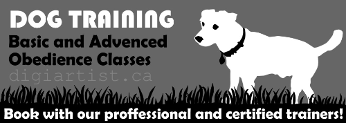Fourth Additional product image for - DogTraining_1