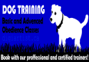 DogTraining_1 | Photos and Images | Animals