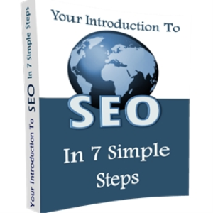 Your Introduction to SEO 'IN 7 SIMPLE STEPS' | eBooks | Business and Money