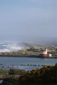 Oregon Coast Lighthouse | Photos and Images | Travel