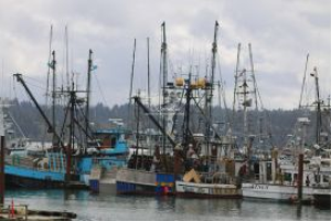 Fishing Boats Oregon | Photos and Images | Travel