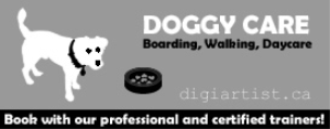 doggycare_3