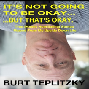 it's not going to be okay, but that's okay (ebook)