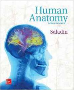 human anatomy - 5th edition (2016)