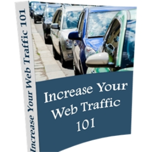 Increase Your Web Traffic 101 | eBooks | Business and Money