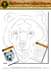 Bear Pattern 001 | eBooks | Arts and Crafts