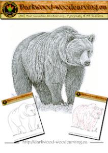 Bear Pattern 002 | eBooks | Arts and Crafts